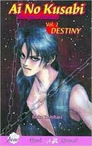 Ai No Kusabi: The Space Between Volume 2: Destiny (Yaoi Novel)
